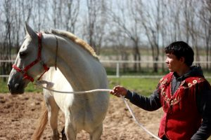 horse rider seen on a Turkmenistan tour