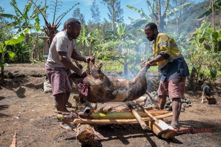 Mumu lunch on our mount hagen festival tour , Papua new Guinea