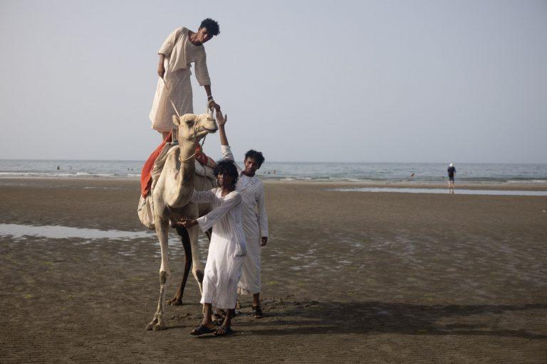 Camels on an Eritrean beach.
