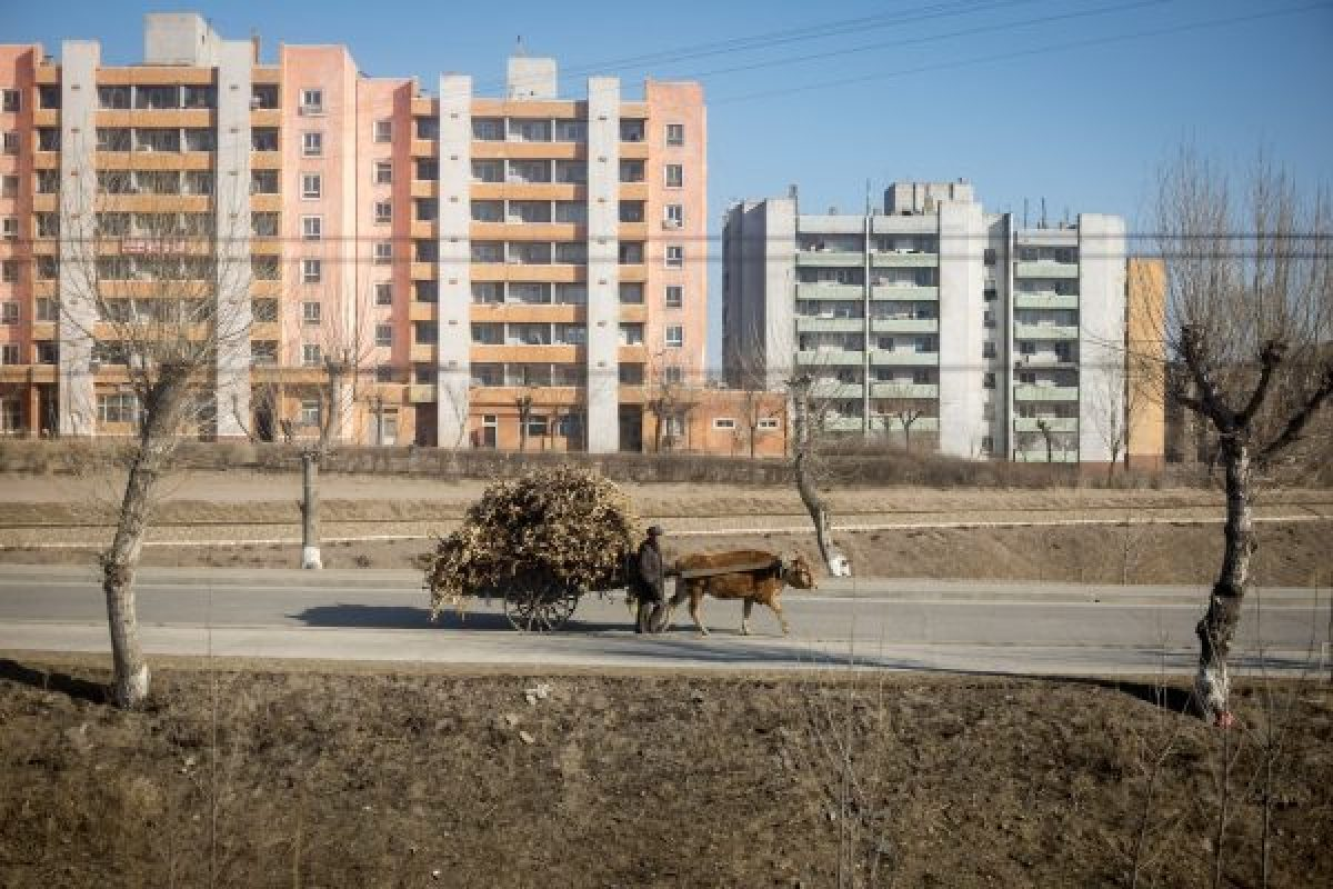 Views from a North Korean train on tour with Rocky Road Travel.