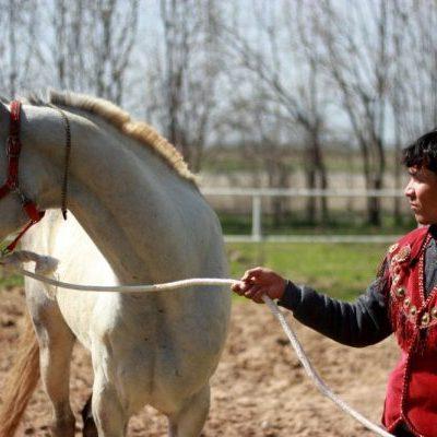 horse rider seen on a Turkmenistan tour